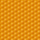Illustration of a Natural Background with Honeycombs royalty free illustration