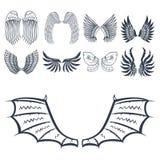 Illustration naturelle de vecteur de conception de paix de plume d'ailes de pignon d'oiseau de vol animal de liberté Image libre de droits