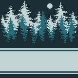 Illustration of a night of coniferous forest. Stock Photos