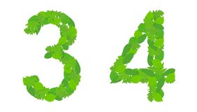 Illustration numbers 3 and 4, green spring-summer leaves. stock illustration