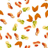 Illustration of nuts Stock Photos