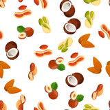 Illustration of nuts Royalty Free Stock Images