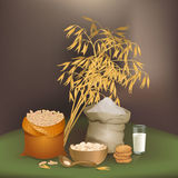 Illustration with oats foodstuff. There are sack with oats grains, flour, some cookies, liquid glass, flakes, and oats ears Stock Photo