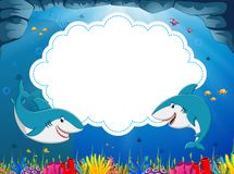 The ocean view with the cloud board blank space and two huge shark in the blue water