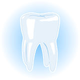 Illustration Of A Healthy Tooth Royalty Free Stock Photography