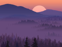 Illustration Of Purple Valley With Coniferous Wood. Stock Photo