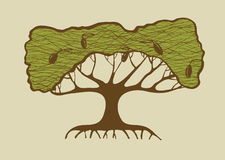 Illustration of old olive tree Royalty Free Stock Photography