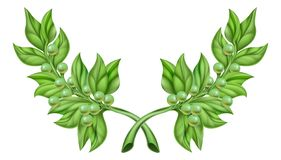 Olive Branch Wreath. An illustration of olive branches, the symbol of peace, crossed like a wreath royalty free illustration