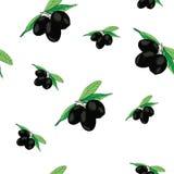 Illustration of olive seamless pattern Royalty Free Stock Photo