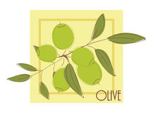 Illustration with olives Royalty Free Stock Photo