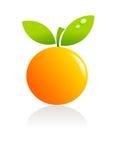 Illustration orange de fruit illustration stock