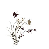 Illustration with orchid and butterfly. Royalty Free Stock Photography