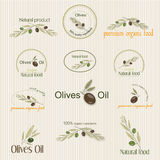Illustration of organic food, vector. Illustration of banner organic food and natural products with olives for the logo, in vector format Royalty Free Stock Photo