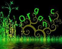 Illustration organique Image libre de droits