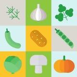 Illustration organique d'icônes de légumes d'automne Ensemble de colo Images stock