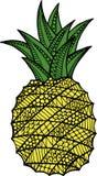 Illustration ornementale tirée par la main d'ananas de griffonnage illustration de vecteur