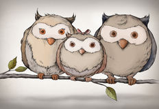 Illustration of an owl family. That is sitting on a branch Stock Photography