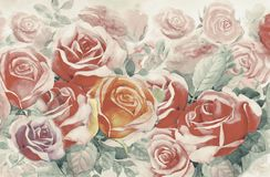 Painting  colorful bunch of roses in the garden. Illustration painted spring flowers colorful bunch of roses in the garden and emotion in realistic vintage with Royalty Free Stock Image