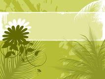 Illustration of palm tree Royalty Free Stock Photos