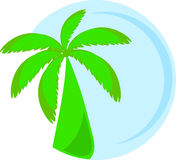 Illustration of palm Stock Photos