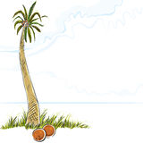 Illustration of palm tree in island. Royalty Free Stock Images