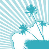 Illustration with palm trees. Stock Image