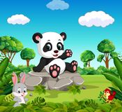 Panda in the forest. Illustration of Panda in the forest Stock Photo