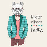 Illustration of panda hipster dressed up in jacket, pants and sweater. Vector illustration Stock Photography