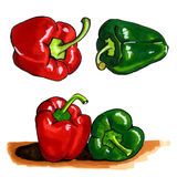 Illustration of paprika Stock Image