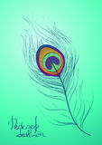 Illustration with peacock feather stock photo