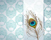 Peacock feather and ornamental wallpaper Stock Photo