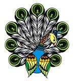 Illustration peacock, logo design Stock Images