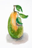 Illustration of pear Stock Image