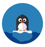 Illustration of Penguin on a ice floe Stock Photography