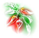 Illustration With Peppers Royalty Free Stock Photography