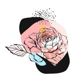 Illustration peu commune créative d'abrégé sur tiré par la main vecteur avec la fleur graphique de pivoine dans des couleurs en p Photographie stock