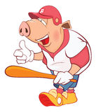 Illustration of a Pig Baseball Player. Cartoon Character Stock Photos