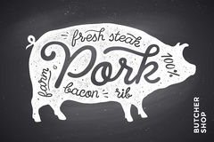 Illustration with pig silhouette Pork. Lettering Stock Photos