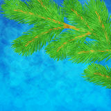 Illustration with pine branch Royalty Free Stock Photography