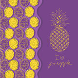 Illustration with pineapple Stock Images