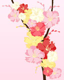 Blossom design Stock Photos