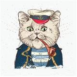 Illustration of pirate  cat on blue background in vector Royalty Free Stock Photo