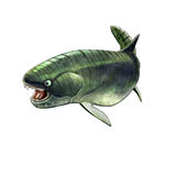 Illustration of a placoderm dukleosteus Royalty Free Stock Images