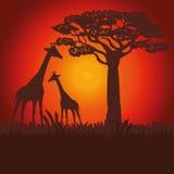 Illustration plate au sujet de conception de l'Afrique Images libres de droits