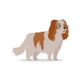 Illustration plate de conception de race de chien de cocker illustration de vecteur