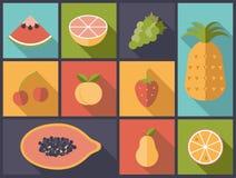 Illustration plate de vecteur d'icônes de fruit Image stock
