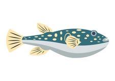 Illustration plate de vecteur de poissons de Fugu Poissons de Fugu sur le fond blanc Illustration d'icône de vecteur de poissons  Photos libres de droits