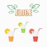 Illustration plate de verre de jus frais naturel Image stock