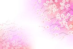 Illustration of plum blossom in Japan. It is a beautiful plum blossom illustration material that imaged Japanese harmony vector illustration