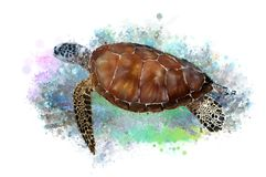 Underwater tropical world with a turtle on an abstract background. stock illustration